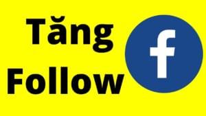 dich-vu-tang-sub-facebook